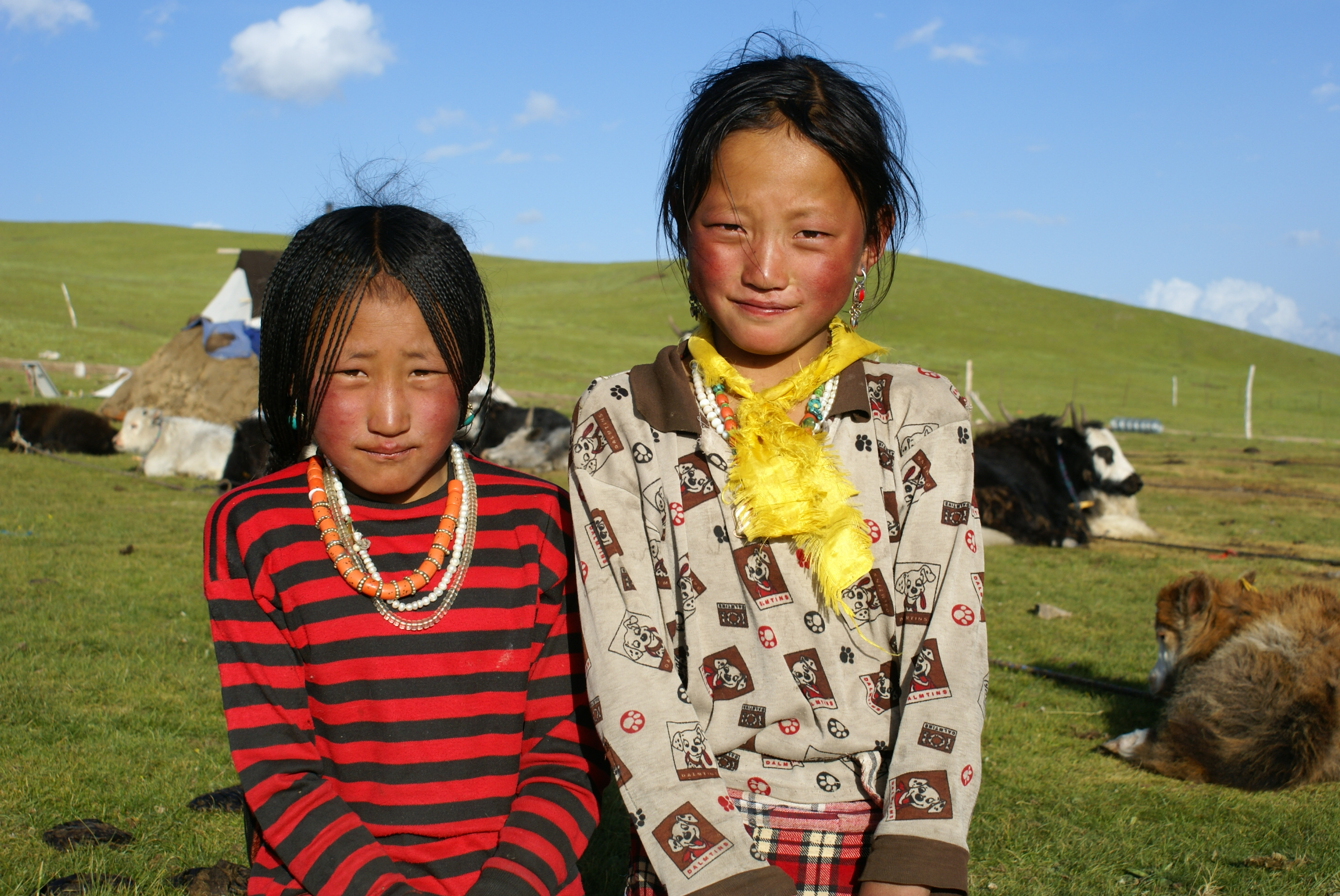 FAQ's on travel in Tibet   The Land of Snows
